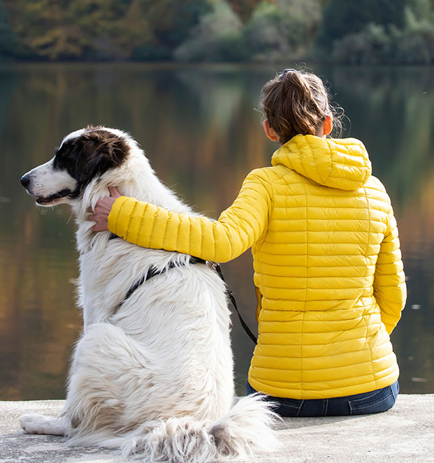 Woman relaxing with her dog at the lake in beautiful autumn sunset.